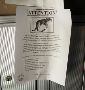 Mountain Lion Warning Poster